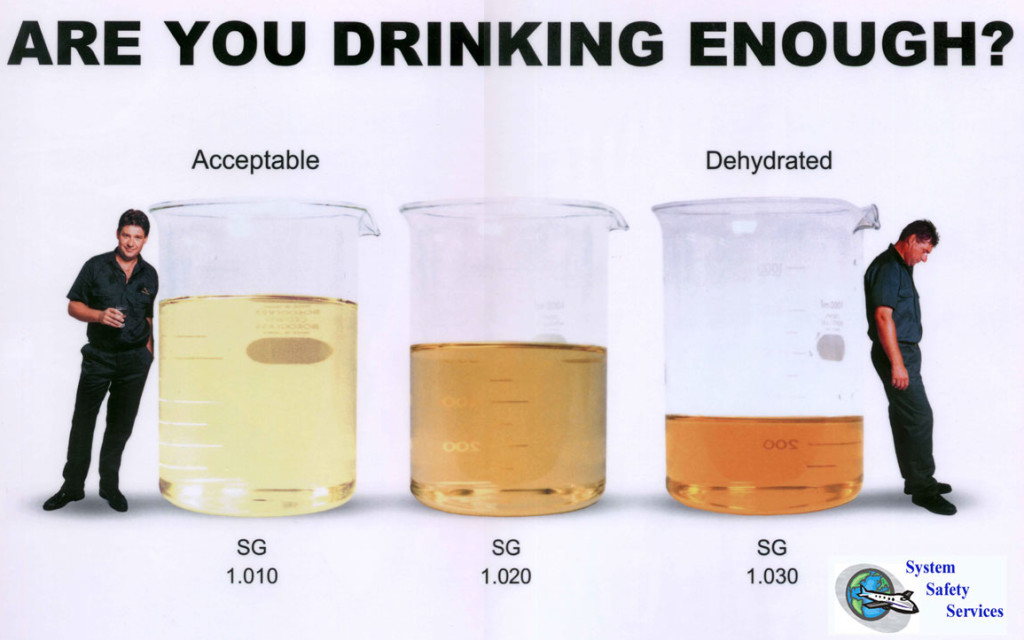 How Much Water Should You Drink a Day
